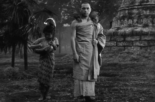 Week36-Burmese Harp-Marianne_html_m14adac3b