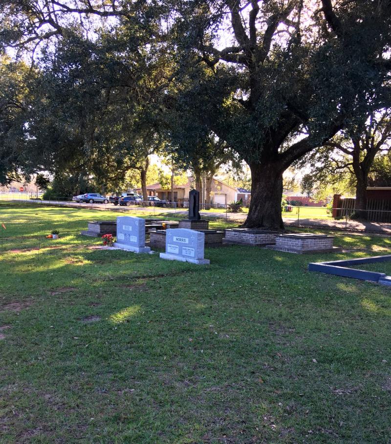 CemeteryTree