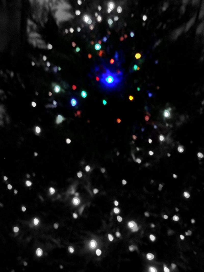 ChristmasTreeFocalBW