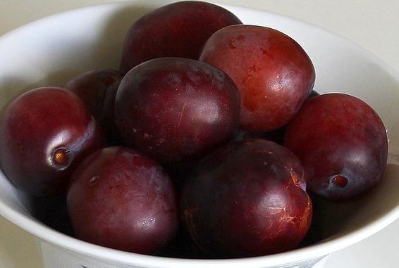 Week 4-plums-1574651_1280